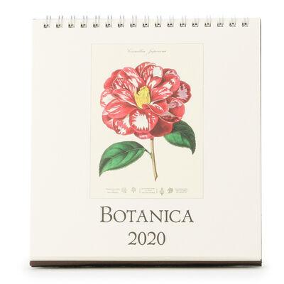 "CAVALLINI(カヴァリーニ)2020年度 デスクカレンダー ""BOTANICA"""