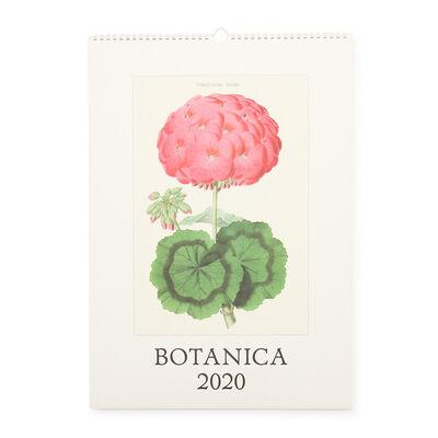 """CAVALLINI(カヴァリーニ)2020年度 壁掛けカレンダー """"BOTANICA"""""""